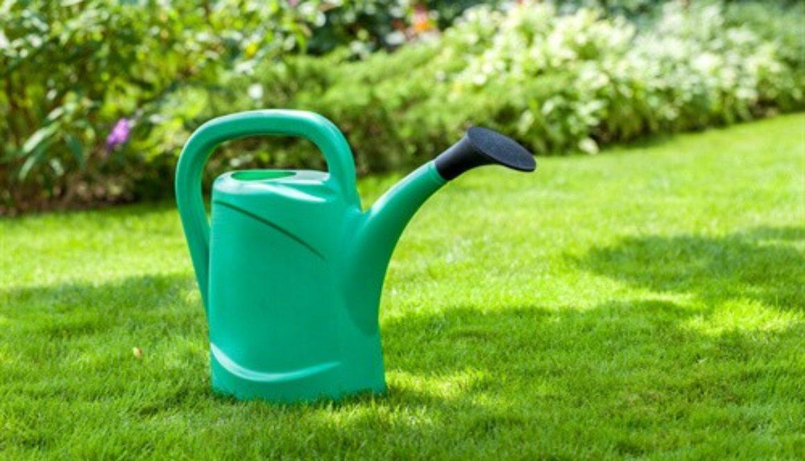 Mietvertragsende Entfernung Von Pflanzen In Garten Zulassig
