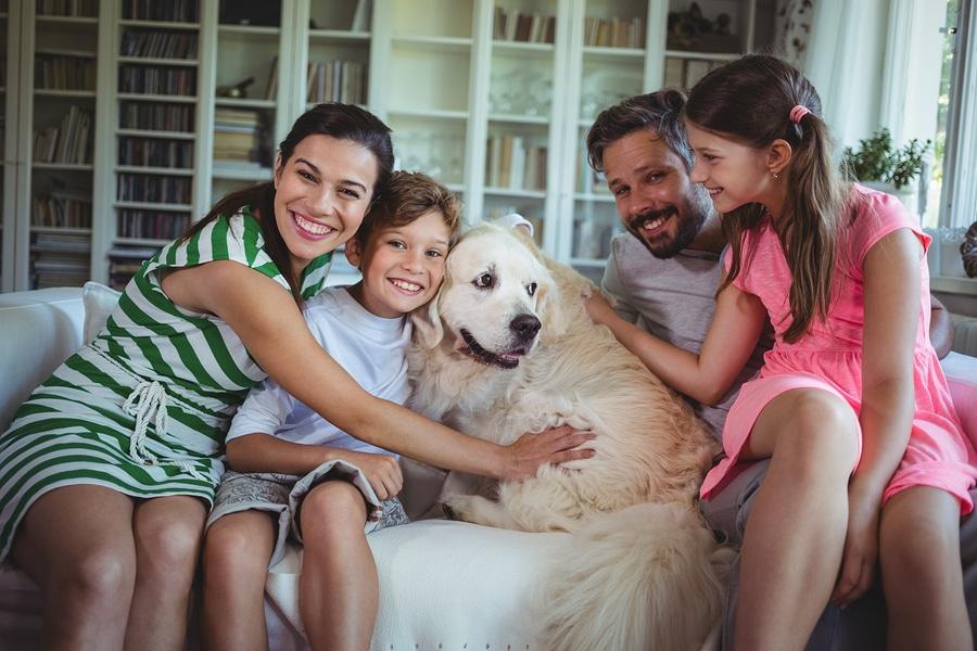 Halten von Haustieren in Mietwohnungen