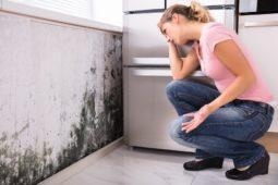 Mietminderung: Schimmelneigung einer Wohnung als Wohnungsmangel