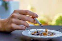 Zigarettenrauch – Beeinträchtigung durch anderen Mieter/Mietwohnung - Mietminderung