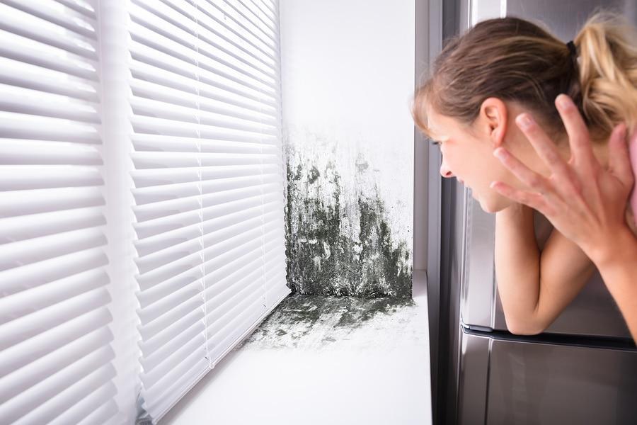 Altbauwohnungen müssen auch schimmelfrei sein – sonst liegt Mietmangel vor