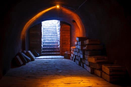 mieterhaftung für eigenmächtige Kellerräumung des Kellers des Mieters