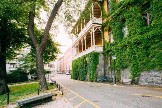 Mietminderung wegen Efeubewuch an einem Teil der Hausfassade