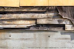 Asbestbelastung einer Mietwohnung – Schadensersatzanspruch des Mieters
