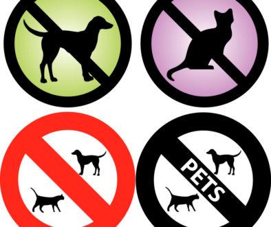 WEG-Beschluss - Wirksamkeit der Tierhaltungsuntersagung