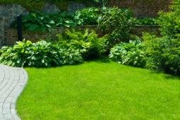 WEG - Sondernutzungsrechts an einer Gartenfläche