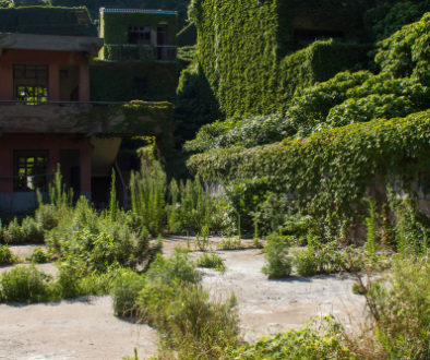 Mieterpflicht zur Kontrolle des Efeubewuchses auf seiner Terrasse AG Köln Az.: 208 C 537/00 Urteil vom 14.02.2001 Die Klägerin ist Vermieterin, die Beklagte Mieterin einer im 3. Obergeschoss gelegenen Maisonette-Wohnung mit Terrasse aufgrund Mietvertrages vom 16.8.1998. Eine Efeupflanze der Vormieter befand sich bei Beginn des Mietverhältnisses bzw. Übergabe im September 1998 auf der Terrasse der Wohnung. Die Beklagte hat während der Folgezeit die wachsenden Triebe der Pflanze abgeschnitten, ohne sich jedoch um das Wurzelwerk zu kümmern, das unter den Holzrost des Terrassenbodens wucherte. Im Dezember 1999 kam es in der Wohnung unter der Beklagtenwohnung zu einem Wasserschaden, der dadurch verursacht sein soll, was streitig ist, dass das Wurzelwerk unter dem auf dem Terrassenboden der Wohnung der Beklagten befindlichen Holzrost in die Dachhaut eingedrungen sein und die Undichtigkeit verursacht haben soll. Die Klägerin macht vorliegend die Kosten für die Neueindeckung der Terrasse und Beseitigung des Schadens in der darunter liegenden Wohnung als Schadensersatz gegenüber der Beklagten geltend. Die Klägerin ist der Auffassung, dass die Beklagte für die Überwachung und Beschneidung des Wurzelwerkes verantwortlich sei. Sie behauptet, dass die Beklagte bei Vertragsbeginn bzw. vorher nie erklärt habe, die Pflanze nicht haben zu wollen. Es habe auch keine Gespräche mit den Vormietern gegeben, in denen die Beklagte die Übernahme der Pflanze abgelehnt habe. Das Wurzelwerk der Pflanze sei in die Dachhaut eingedrungen, habe diese undicht gemacht, so dass es zu dem Wasserschaden bei den Mietern unter der Wohnung der Beklagten gekommen sei. Die Material- und Arbeitskosten in Höhe von insgesamt 3287,26 DM seien - wie im einzelnen aufgeführt - angemessen und erforderlich. Die Beklagte behauptet, sie habe gegenüber den Vormietern deutlich die Übernahme aller Pflanzen - auch der Efeupflanze - abgelehnt und hierauf auch bei Übernahme hingewiesen. Der Terrassenbereich sei schon vorher