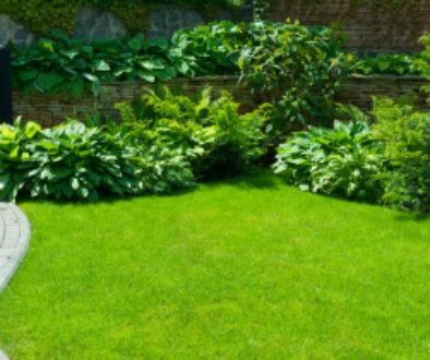 WEG - Beseitigungs- und Wiederherstellungsanspruch wegen Bepflanzung der Gemeinschaftsfläche