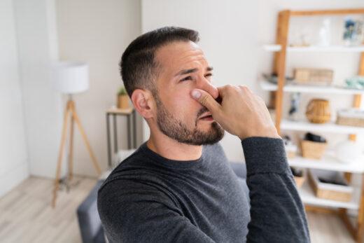 Mietvertragskündigung wegen unzumutbarer Geruchsbelästigung